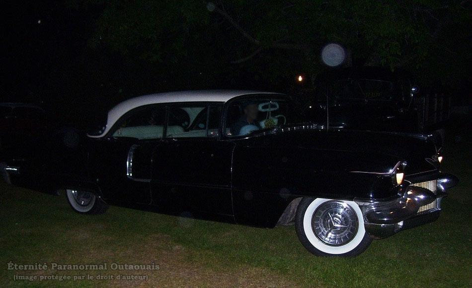 Un bel orbe tout près de sa vieille voiture!