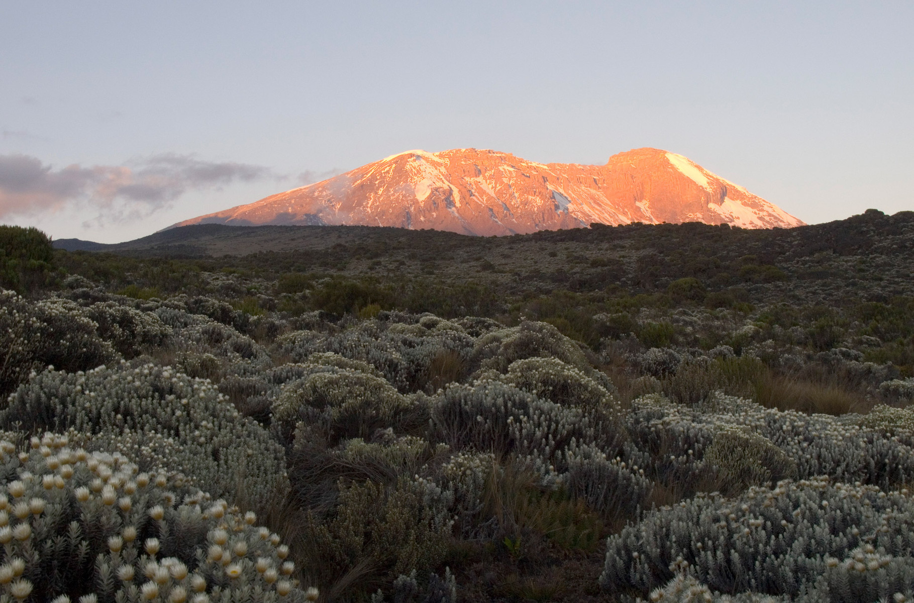 Kilimanjaro by sunset, 2012