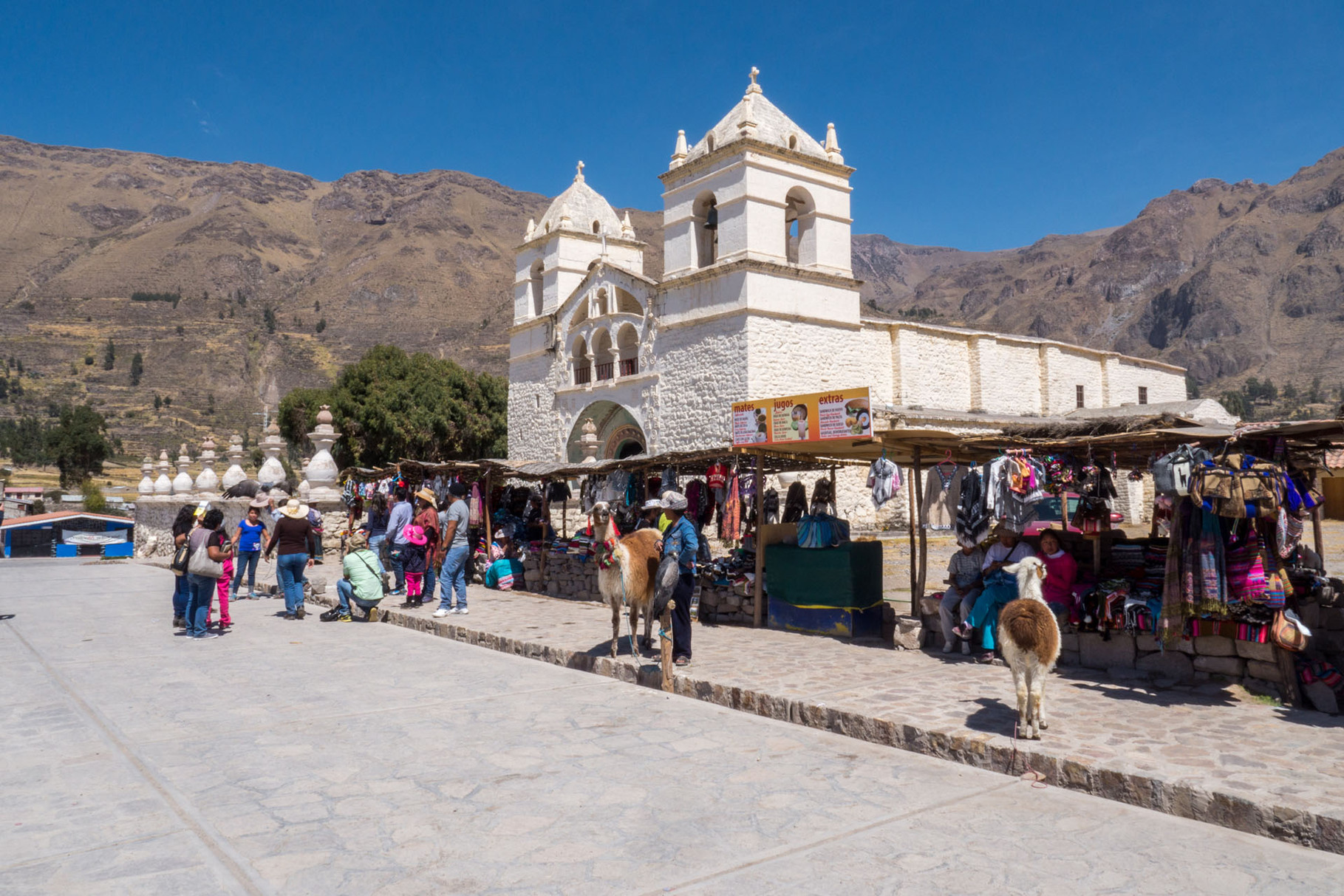 Tourist trap with Alpacas, Falcons and traditional market, Colca canyon