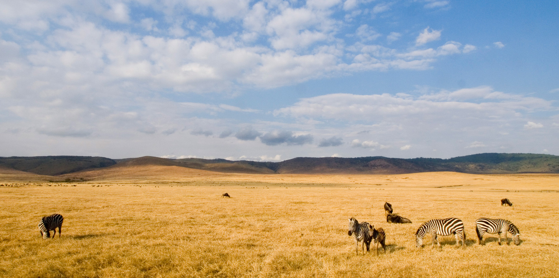 Ngorongoro during dry season, 2012