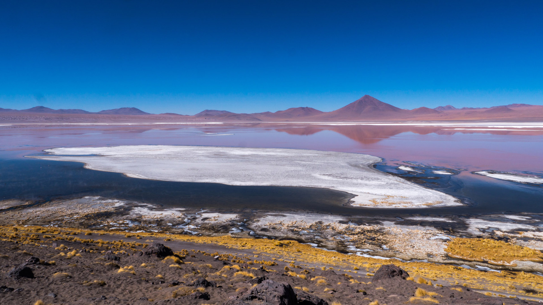 Laguna Colorado with hundreds of Flamingos [Bolivia, 2014]