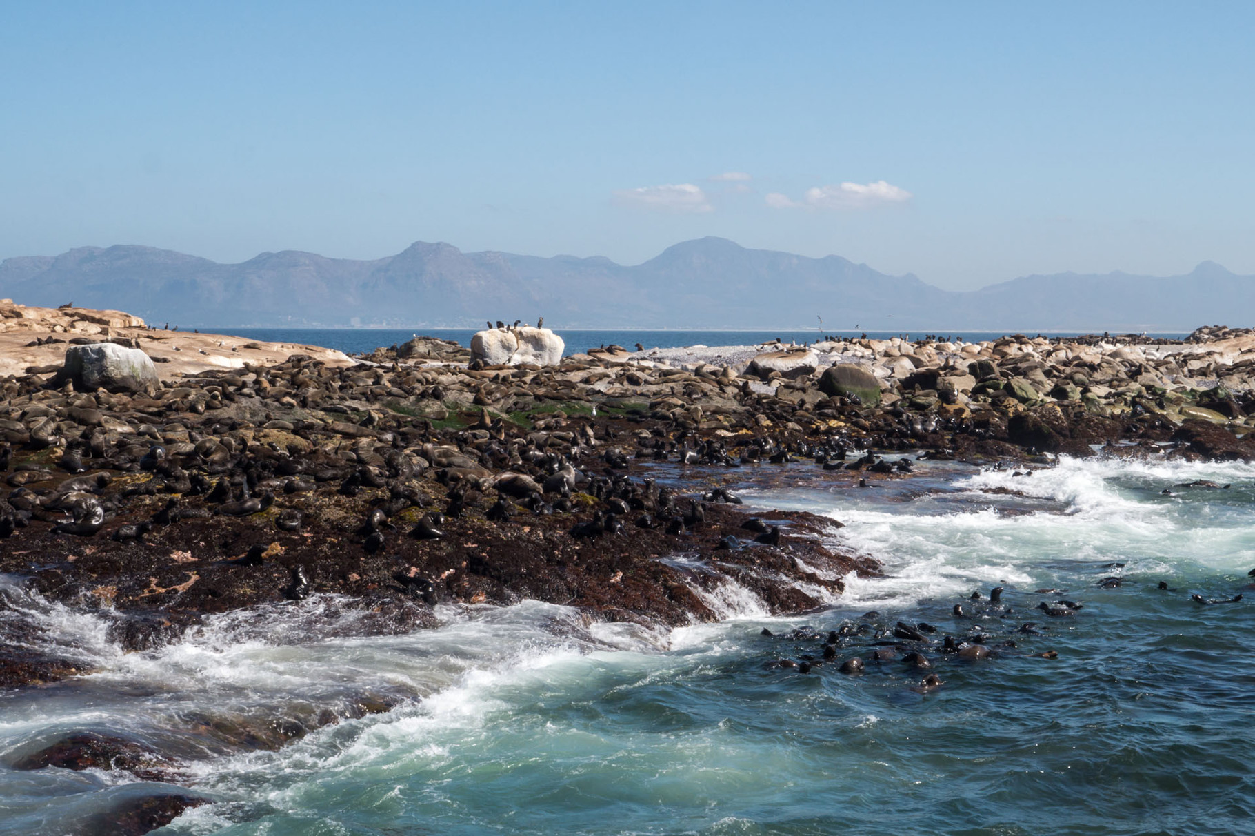 Robben Island, near Cape Town