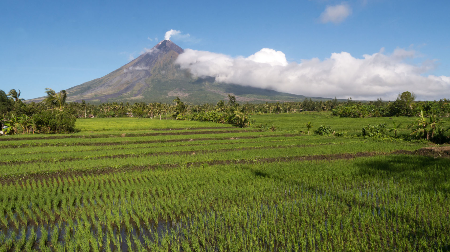 Mayon, Philippines [2015]