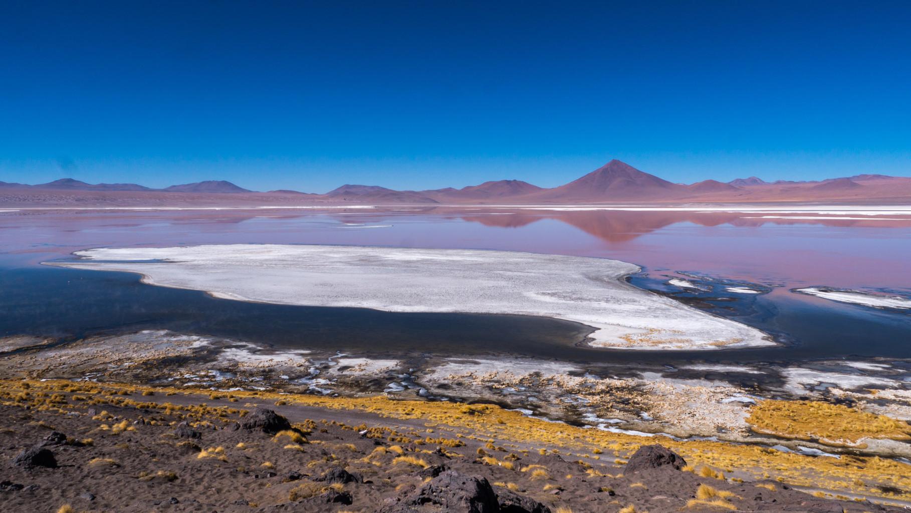 Laguna Colorado with hundreds of Flamingos