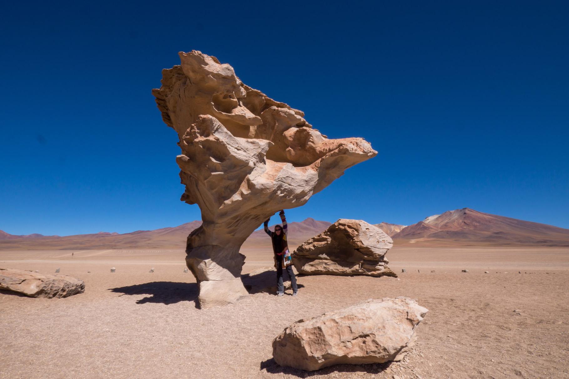 Arbol de Piedra (Stone Tree) [Bolivia, 2014]