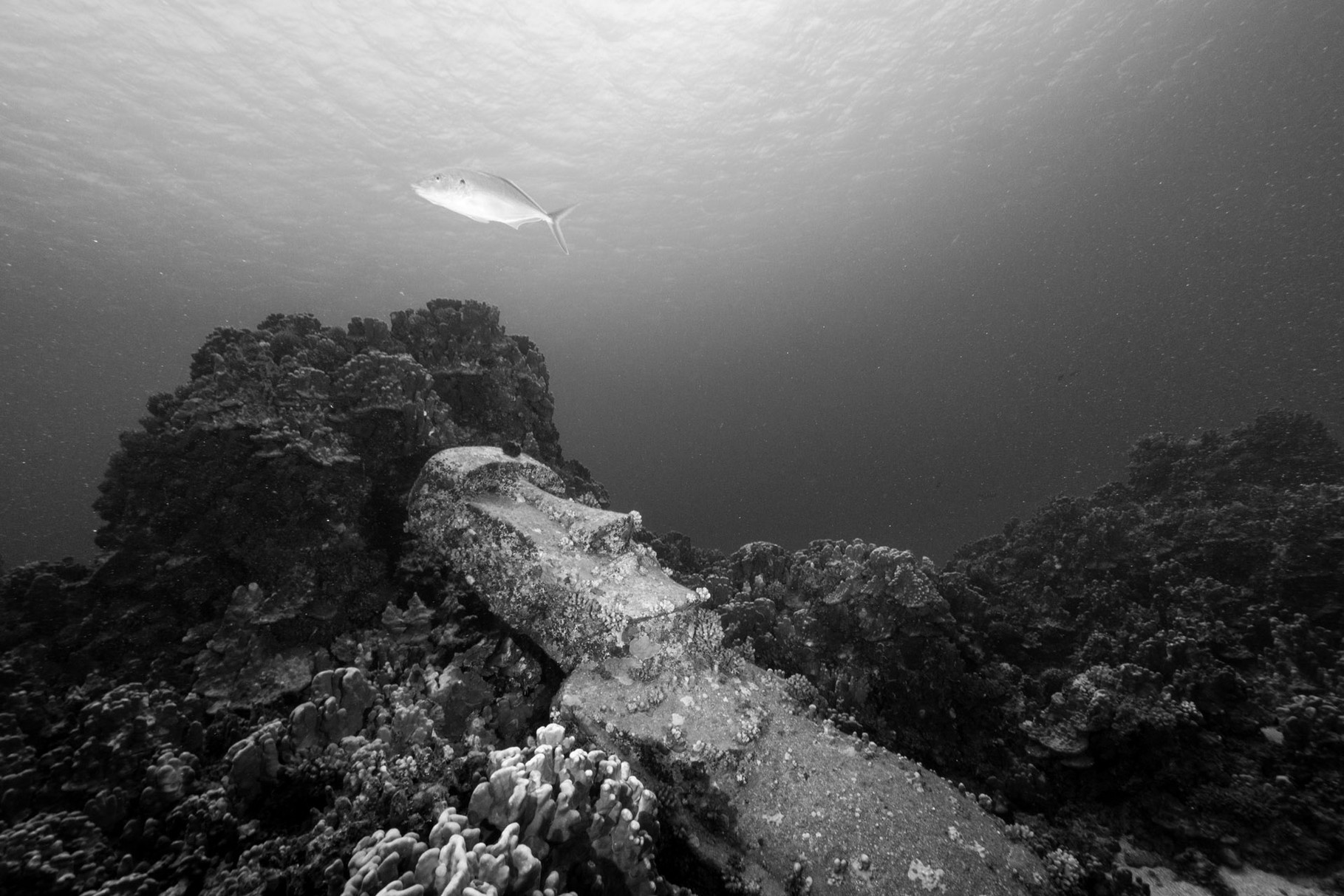 Replica Moai underwater