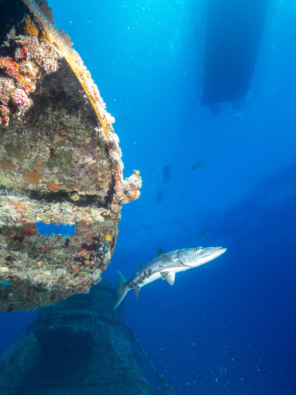 Barracuda, Vandenberg wreck, Key West