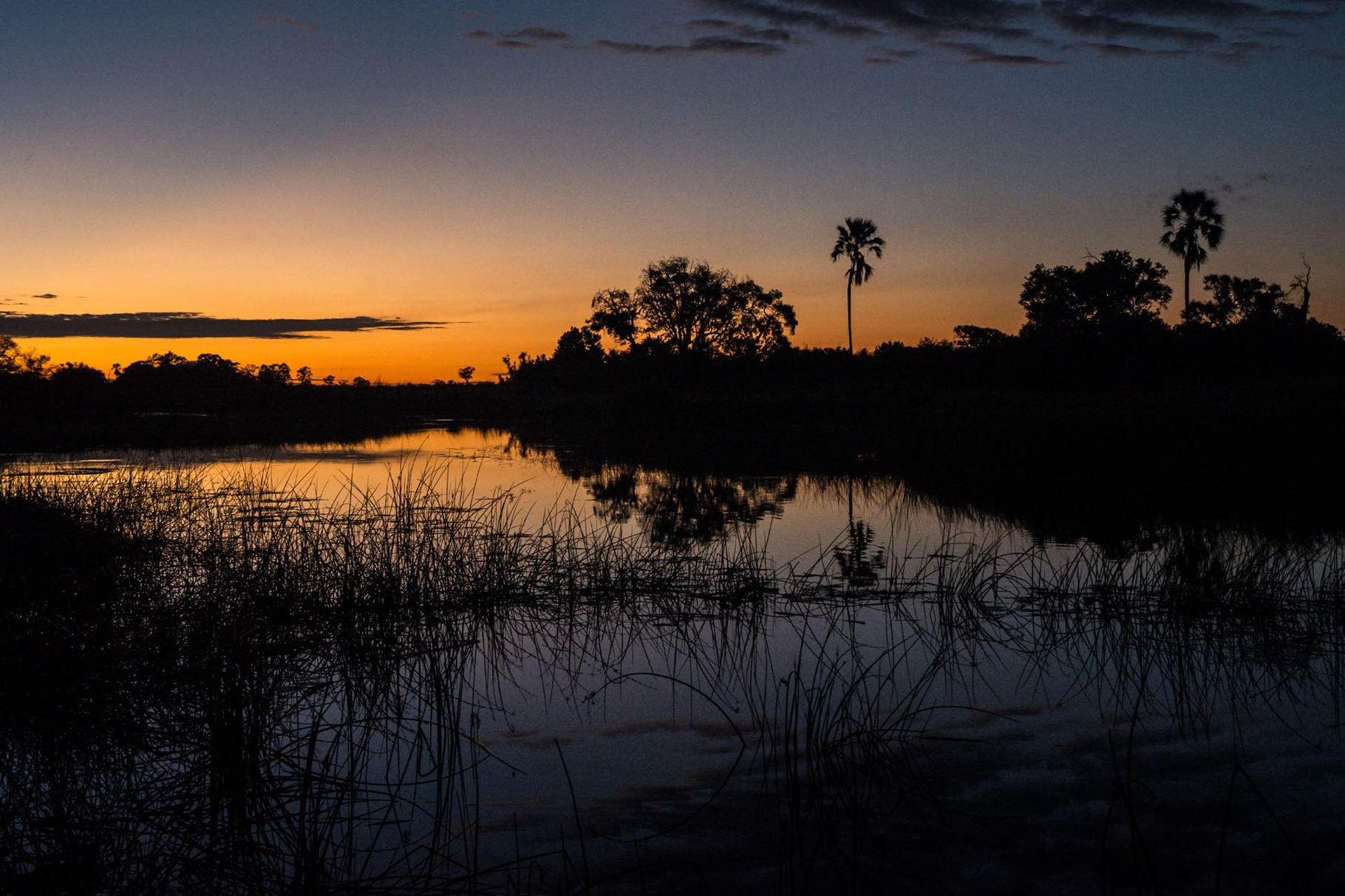 Sunrise in the Okavango delta