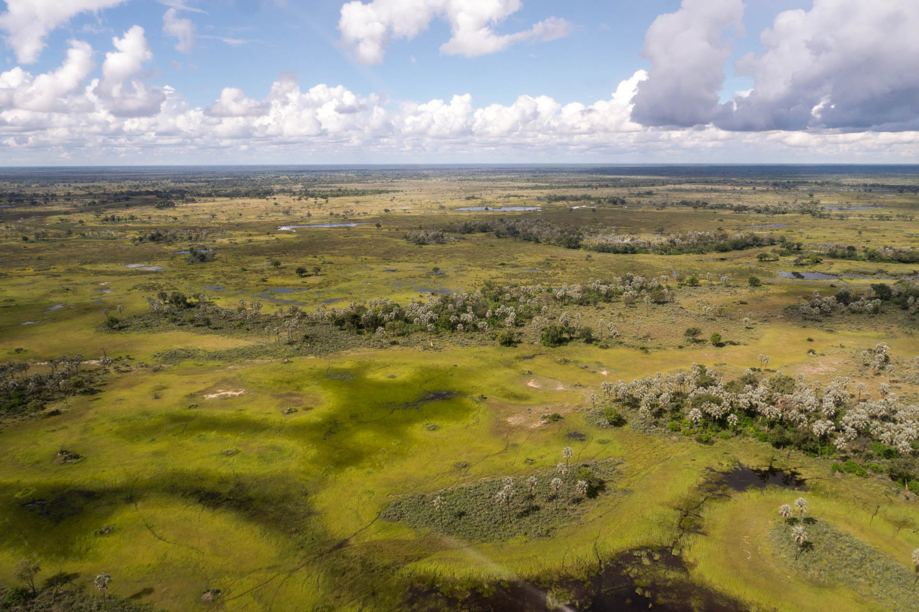 Bird eye view of Okavango delta