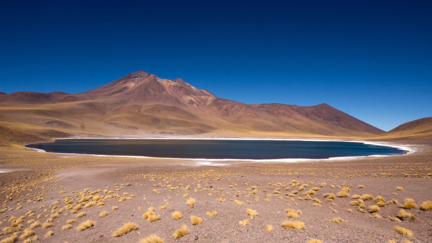 Laguna Miniques (Reserva Nacional los Flamencos, ca 4200 masl), near San Pedro de Atacama, Chile