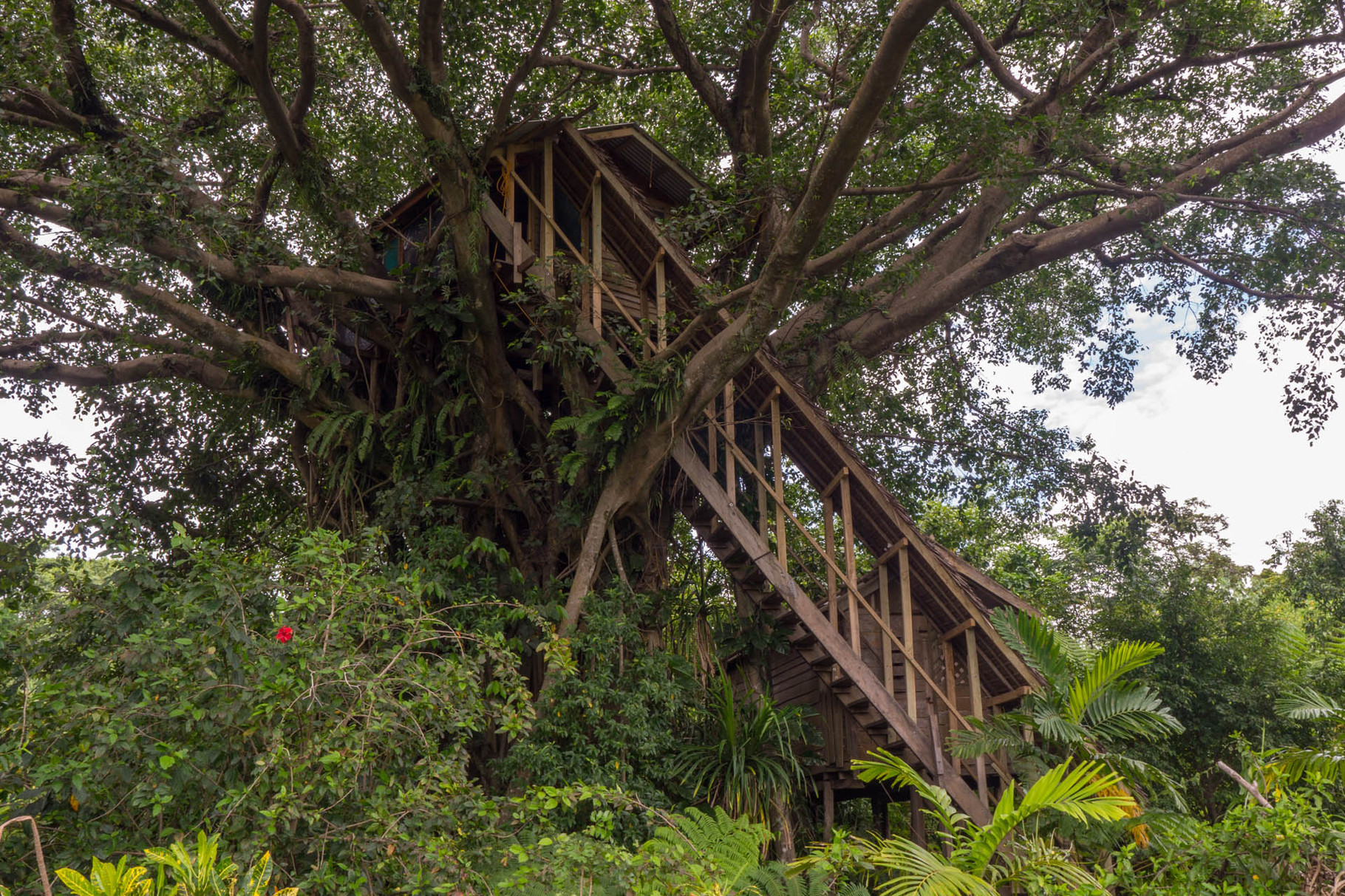 Treehouse bungalows near Yasur volcano, Tanna island