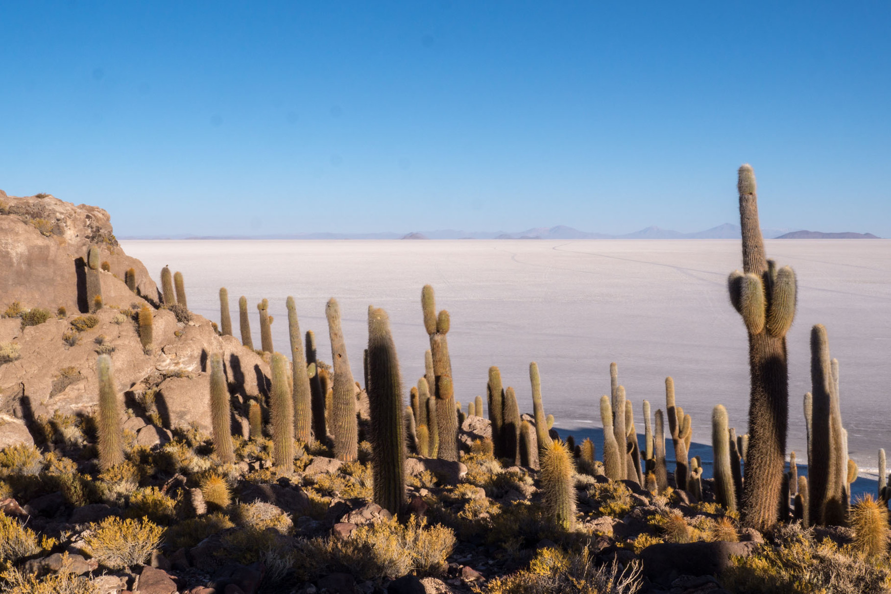 Isla de Pescado/Incahuasi: One of several rock/cactus island in the salt flat