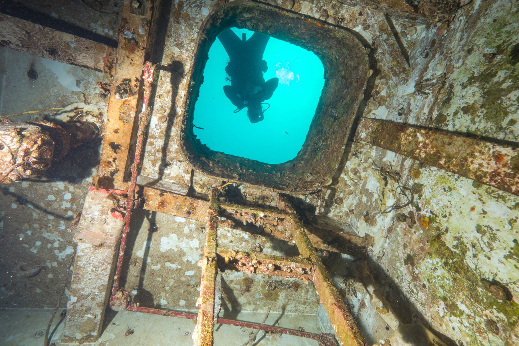 Spiegel grove wreck, Key Largo