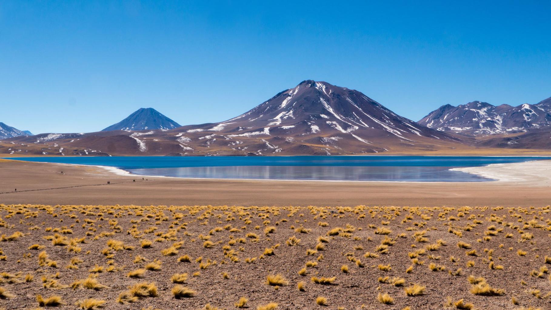 Laguna Miscanti (Reserva Nacional los Flamencos, ca 4200 masl), near San Pedro de Atacama, Chile