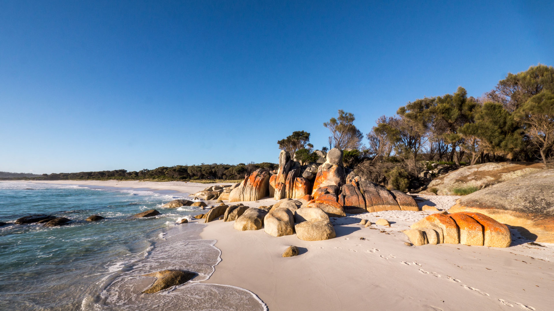 "Bay of Fires National Park: ""Take nothing but pictures, leave nothing but footprints, kill nothing but time!"""