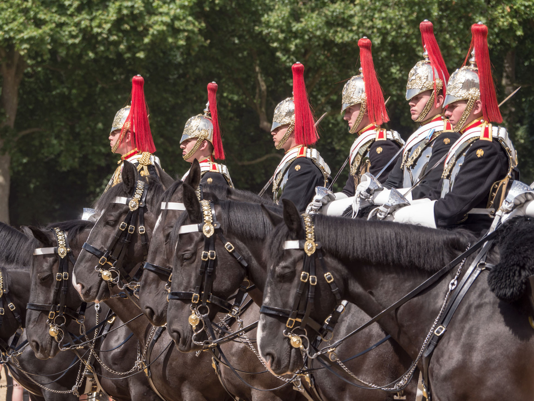 Royal horse guards household cavalry, London
