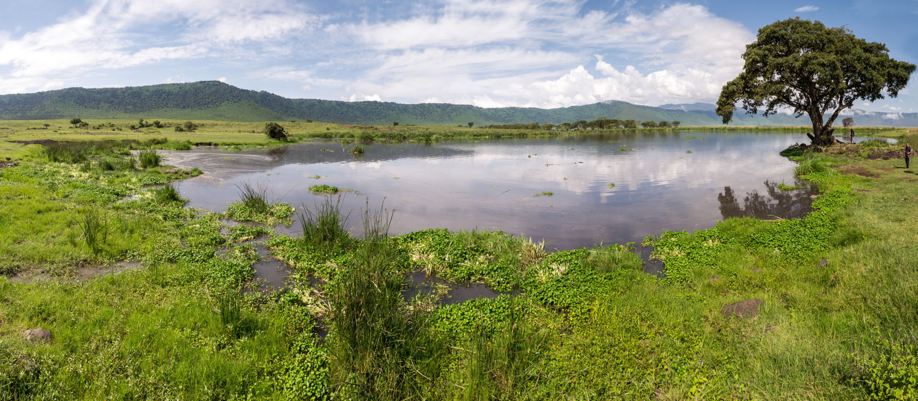 Small lake in Ngorongoro crater, 2015