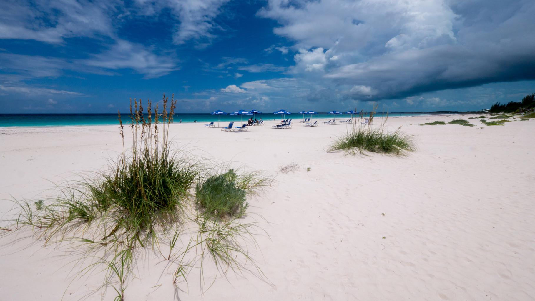Pink sand beach on Harbour Island [Bahamas, 2014]