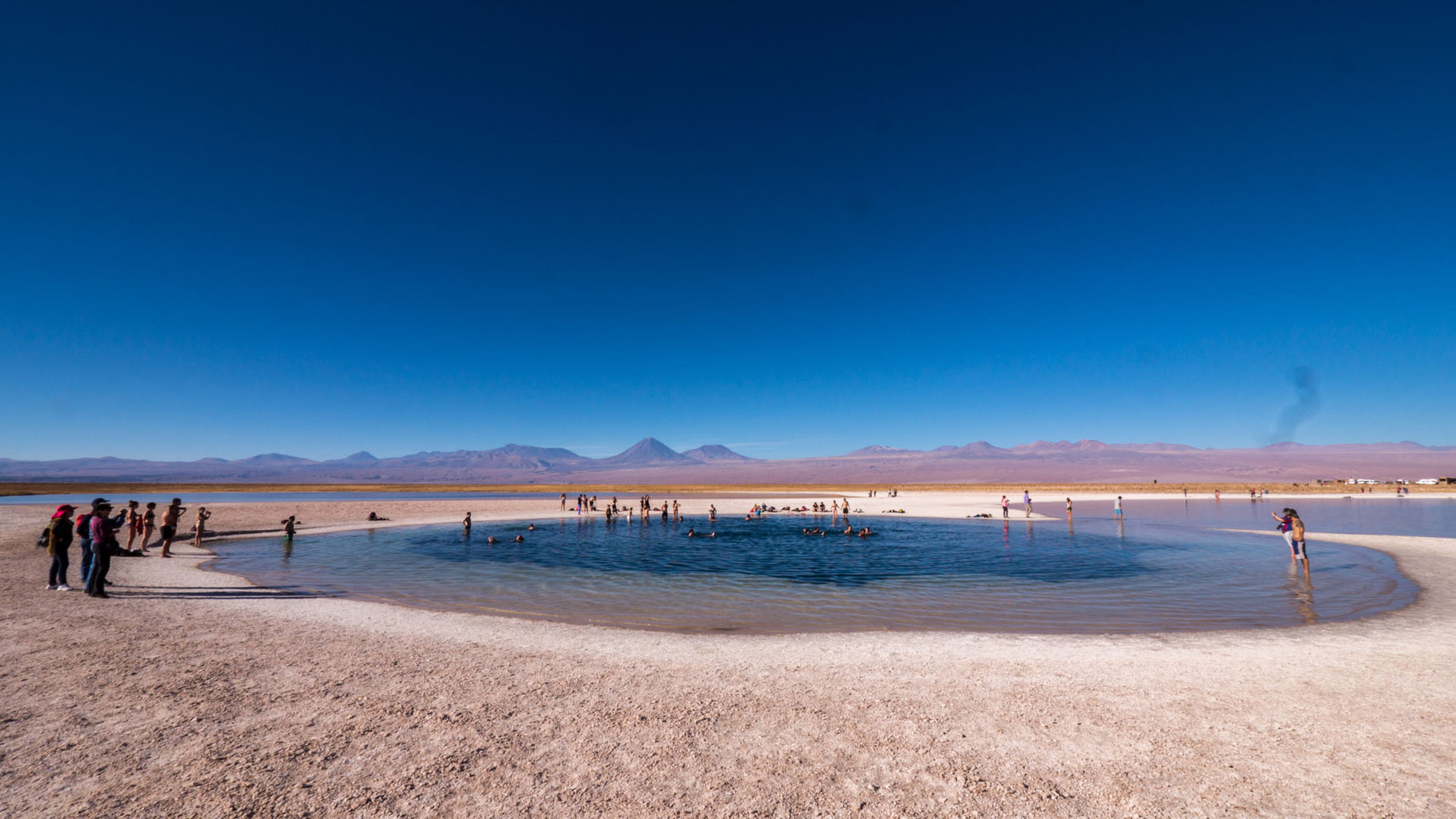 Laguna Cejar (extremely saturated saltwater, similar to dead sea), near San Pedro de Atacama, Chile