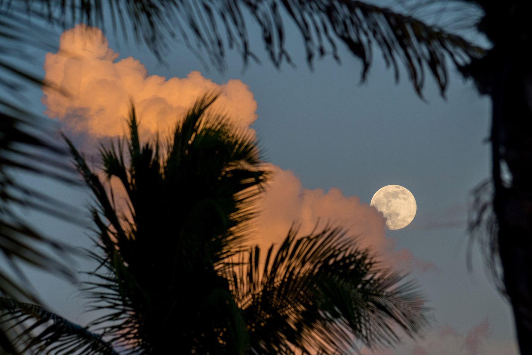 Moonrise at Key West (CB Harvey Rest Beach Park)