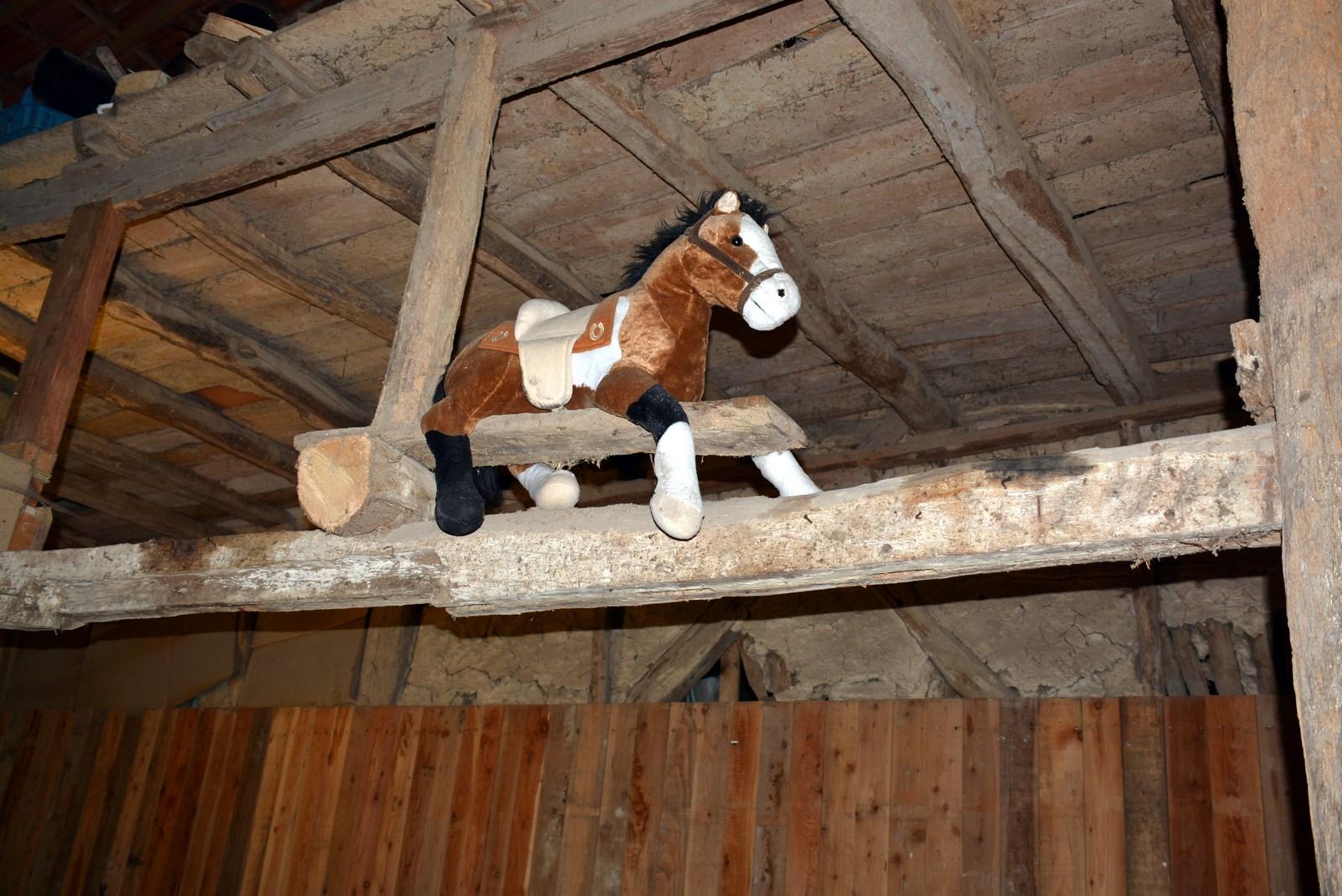 A cheval sur la poutre - location pour vacances en famille