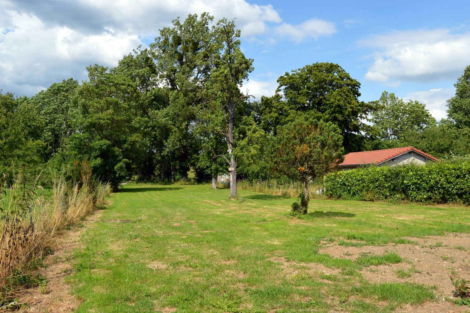 Terrain à l'arrière du gîte à TRIAUCOURT-EN- ARGONNE près de STE-MENEHOULD