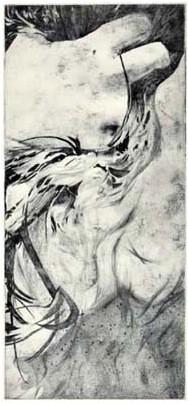 plexi - 40/18 cm - 2012