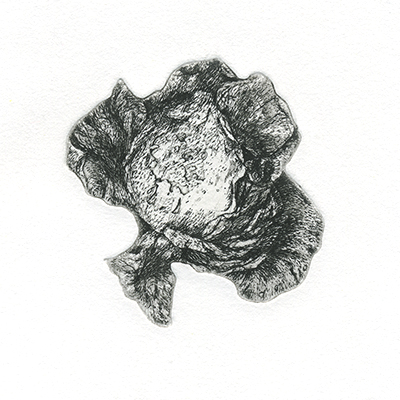 150 000 000 - cuivre - 6,5/6,5 cm- 2016