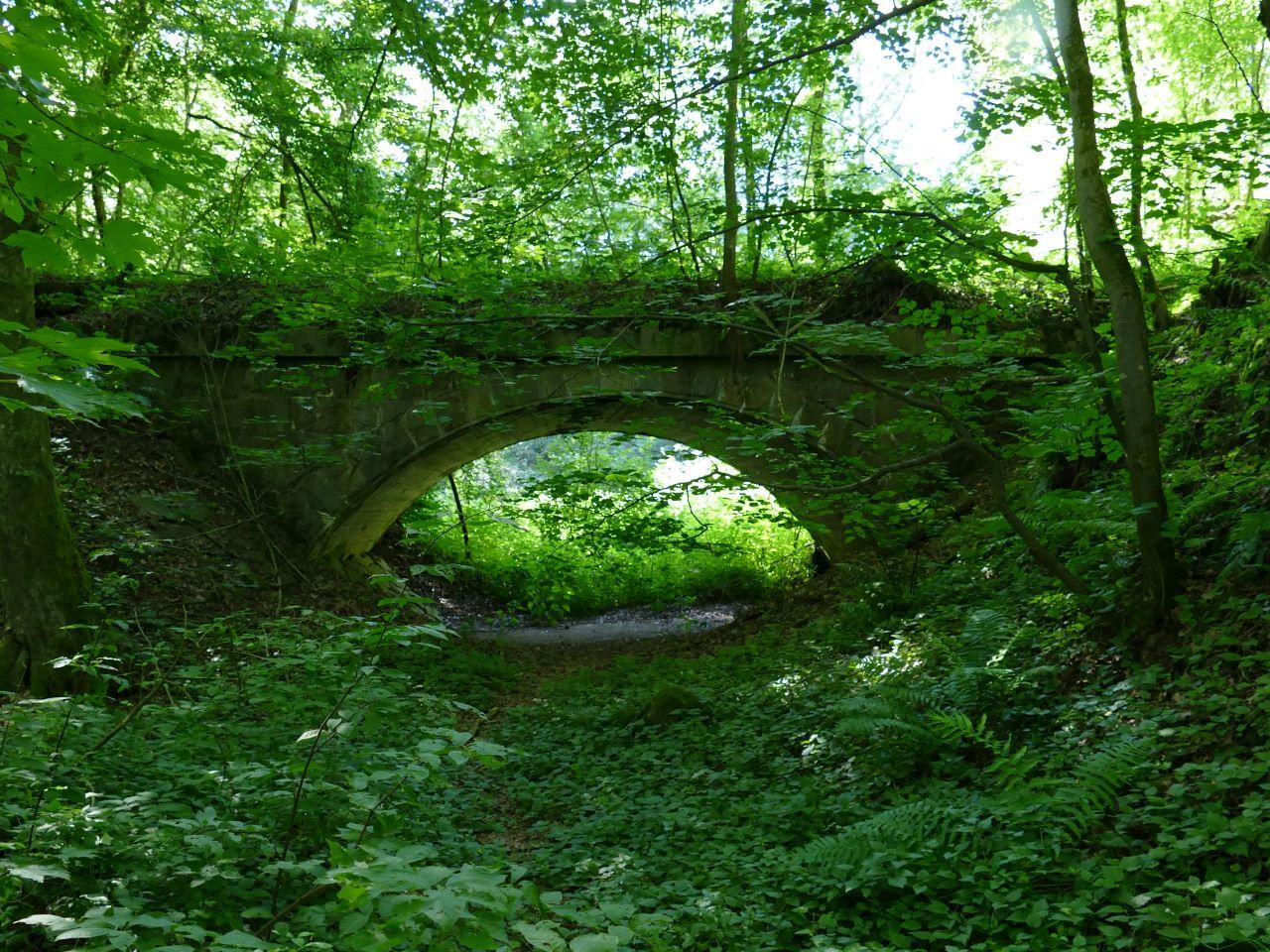 Eine ehemalige Eisenbahnbrücke wird von der Natur zurückerobert
