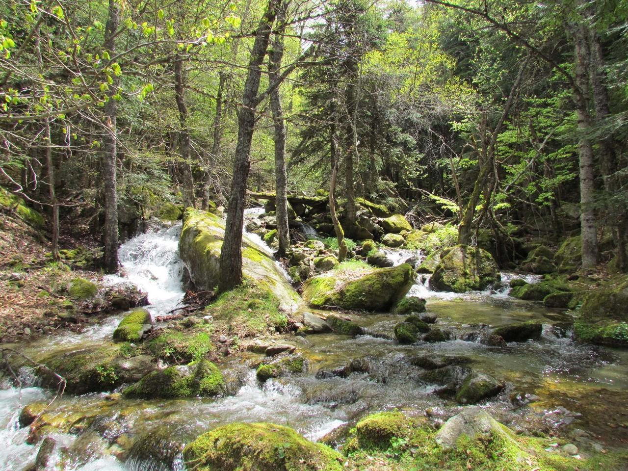 Ravin del Pomer