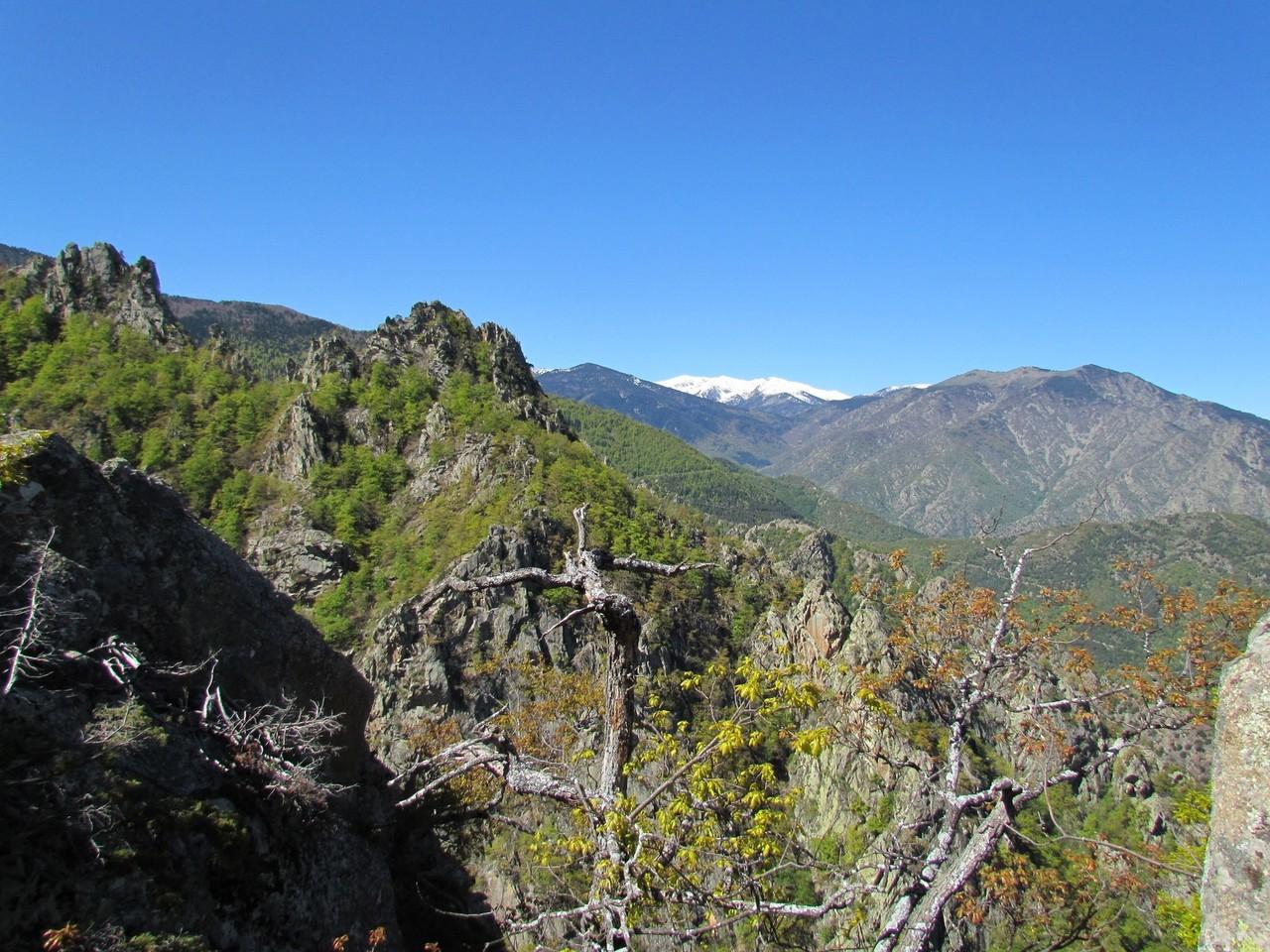 Ravin du Ridoulté, crète frontière enneigée