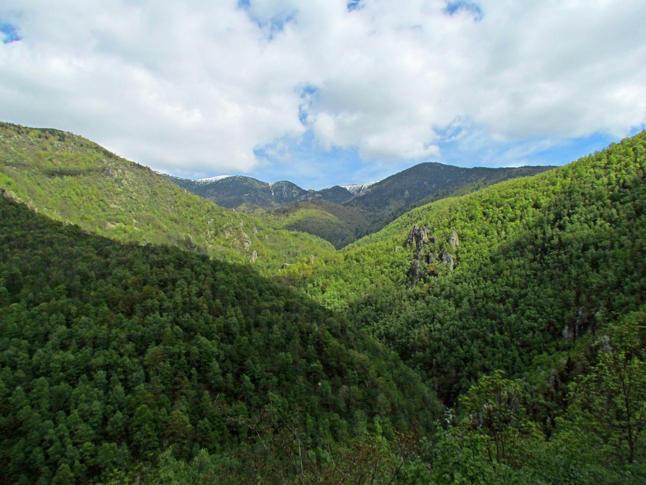 Les hauteurs de la réserve