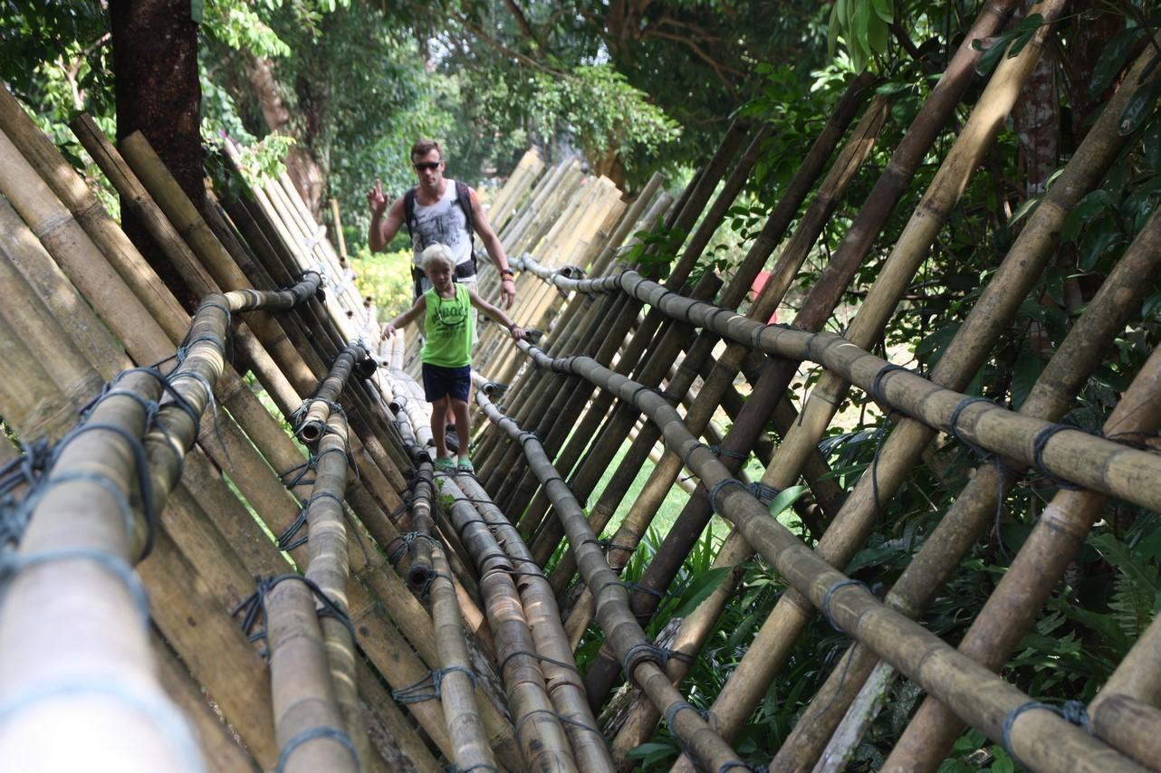 Pont en bambou