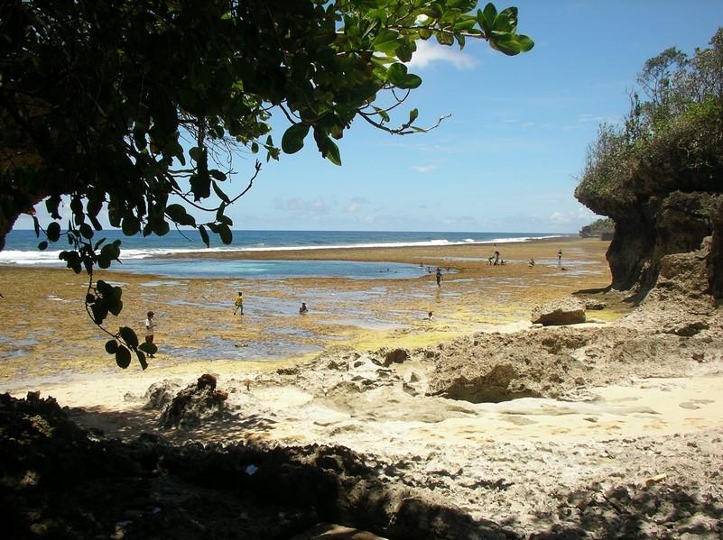 Piscine naturelle à marée basse