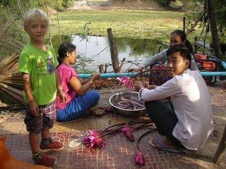 A la préparation du déjeuner : au menu : tiges de lotus