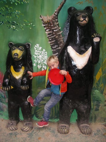 Bear Rescue Center