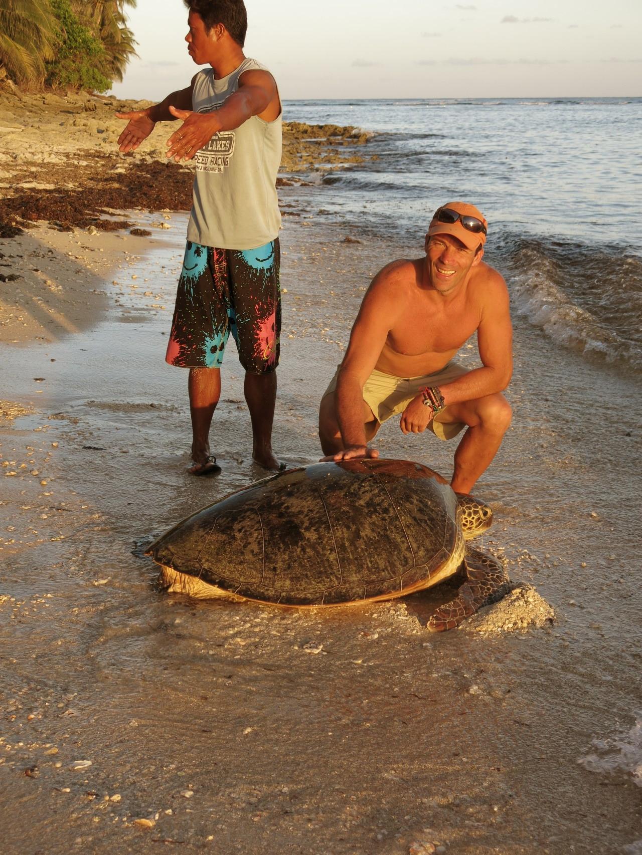 Sauvetage d'une tortue à Daku island