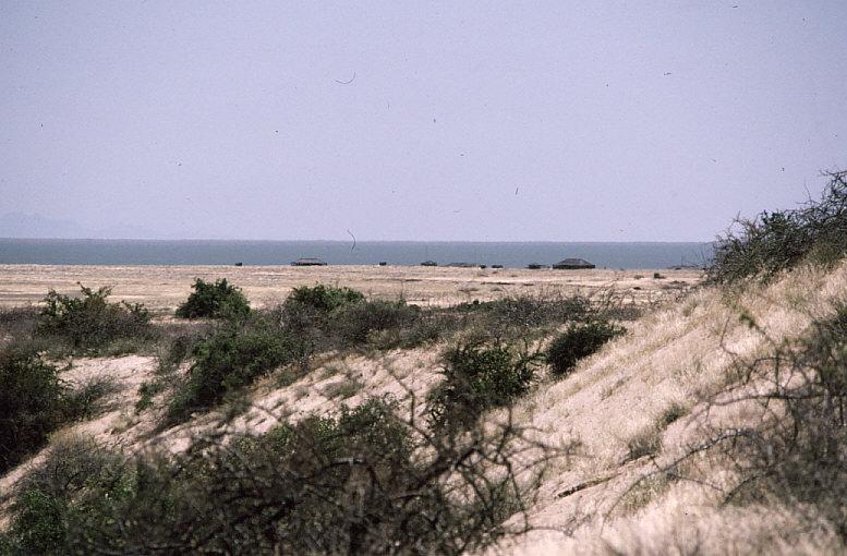 ツルカナ湖遠景