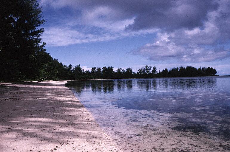 ペリリュー島オレンジ・ビーチ:米軍はここから上陸した