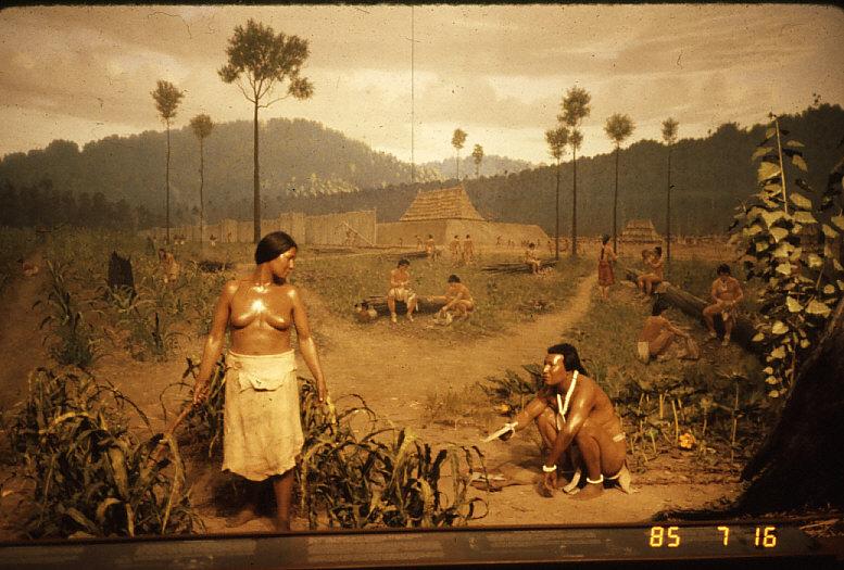 ミシシッピー期のジオラマ:イリノイ州立博物館