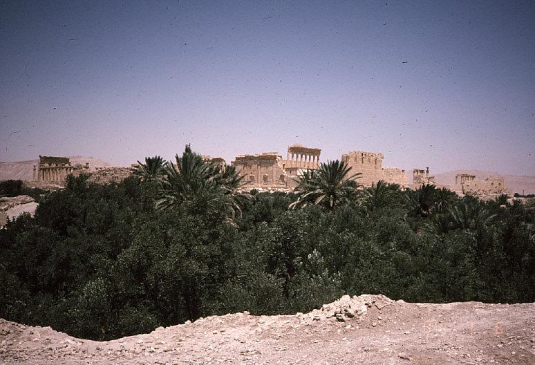 パルミラのベル神殿遠景