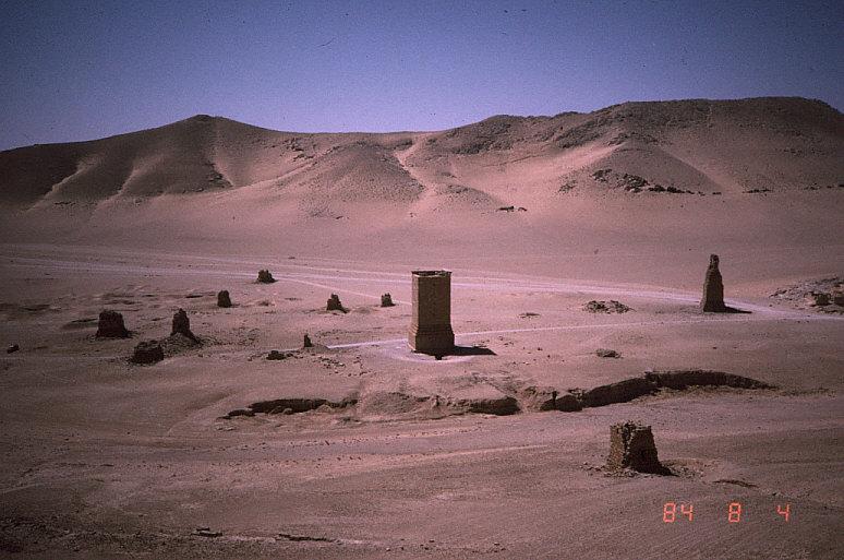 墓地の谷遠景