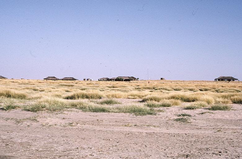 クービ・フォラ遺跡の施設1:ツルカナ湖東岸にある