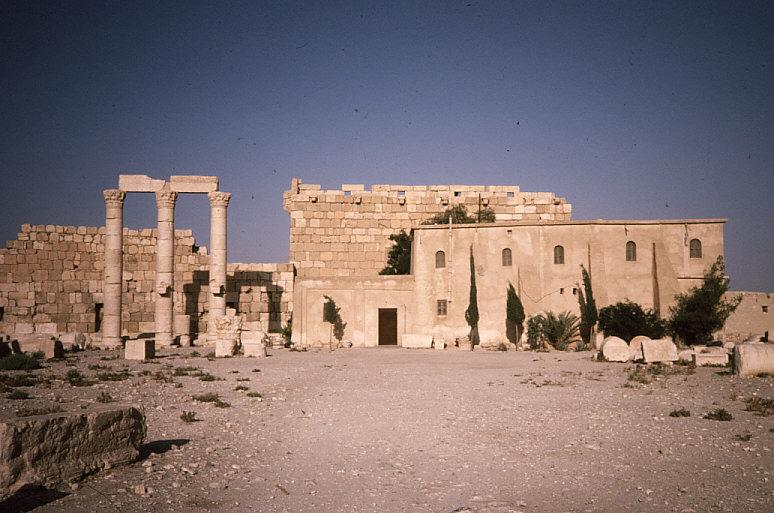 ベル神殿内部のゲストハウス遠景:ここに泊まって調査を実施
