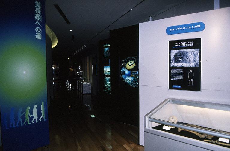 「霊長類への道」展示入口