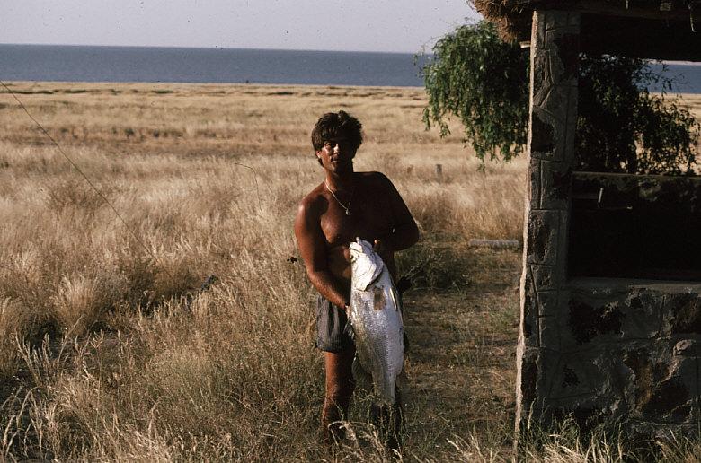 ツルカナ湖で獲れた魚