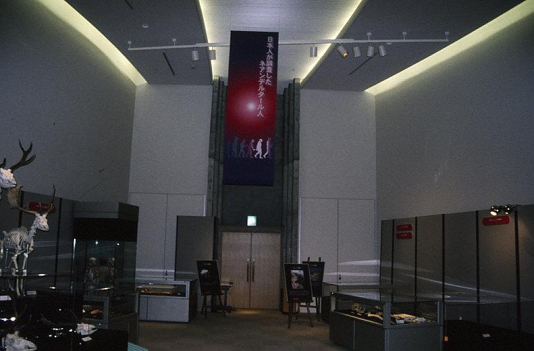 「日本人が調査したネアンデルタール人」展示風景