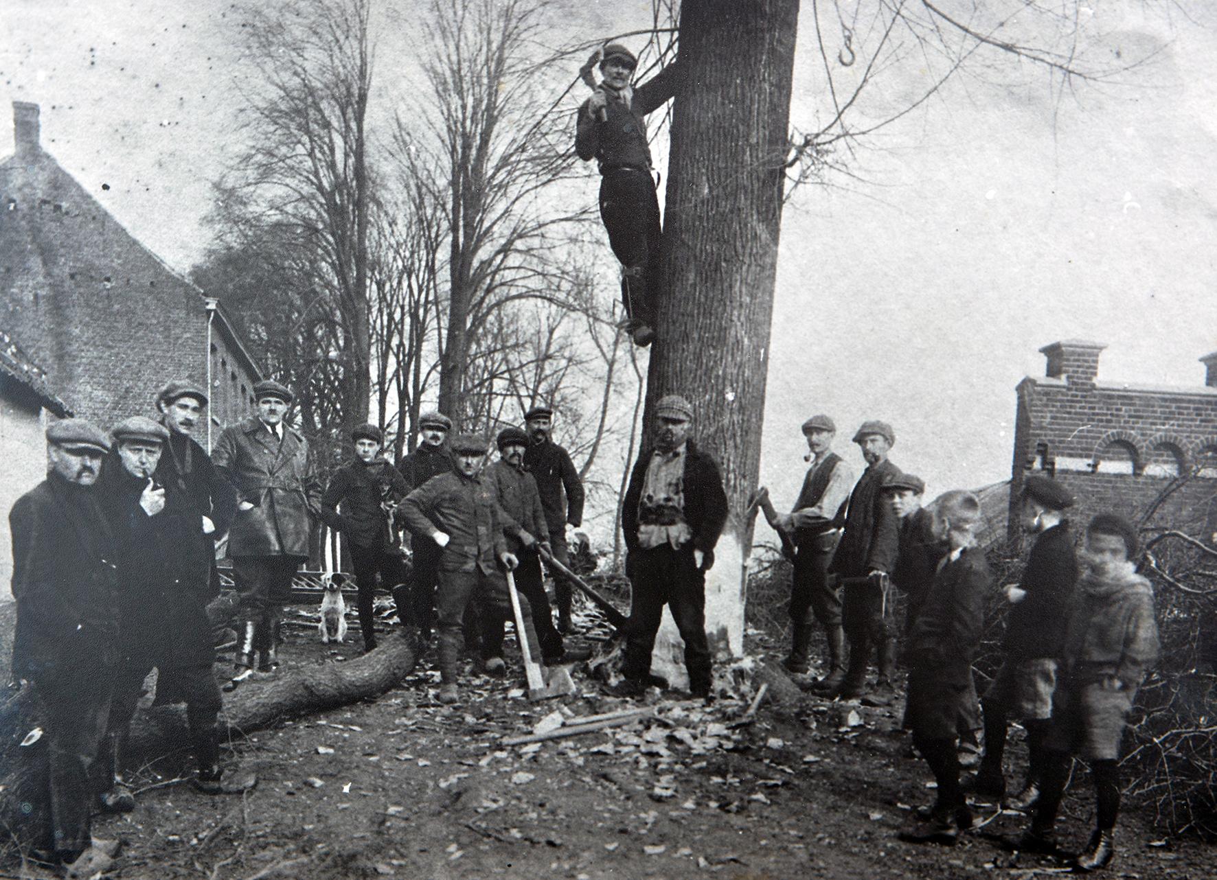 Vader Pieter Vossen bij het kappen der bomen op de wal te Maaseik Pieter hangt tegen de boom