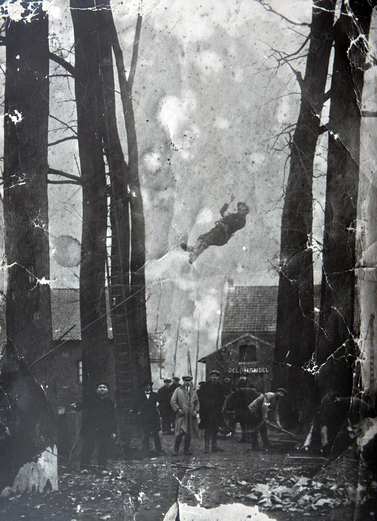 Vader Pieter Vossen bij het kappen der bomen op de wal te Maaseik Pieter hangt in de touwen