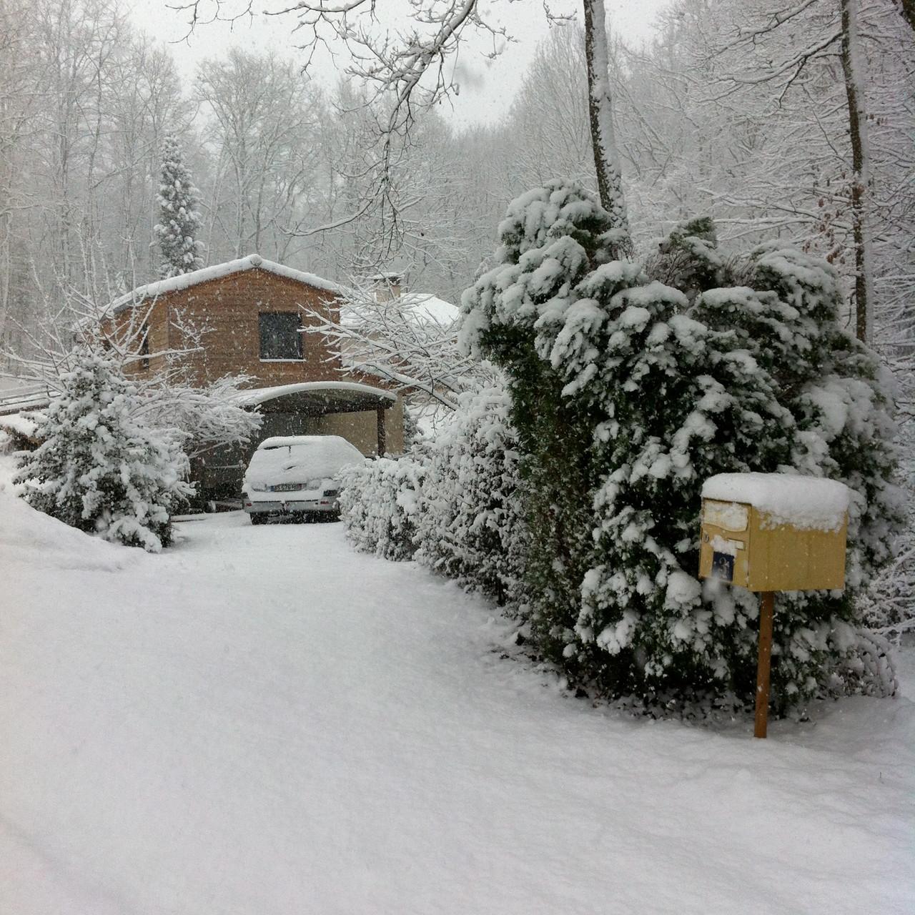 Palmola sous la neige